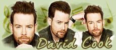 David Cook Forum