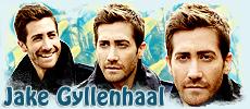Jake Gyllenhaal Forum